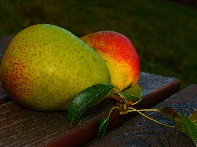 Pears, Good Luise, Fruit, Leaves, Evening Light, Fruits
