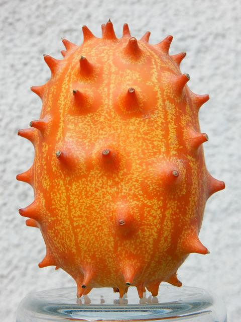 Fruit, Orange, Exotic, Kiwano, Tropical, Prickly