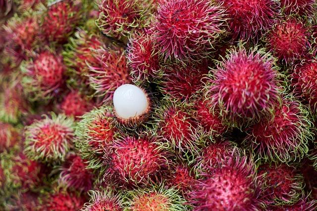 Fruit, Tropical, Rambutan, Asian, Malaysia, Thailand