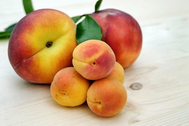 Apricots, Sugar Apricots, Peach, Fruit, Fruits, Ripe