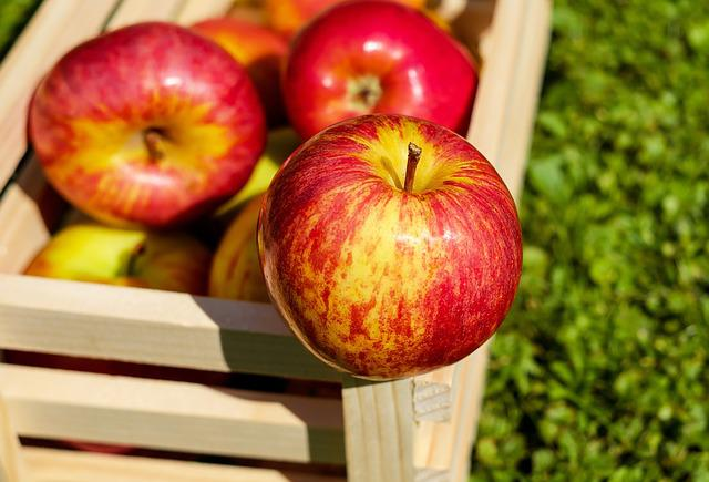Apple, Red, Fruit, Ripe, Harvest, Apple Crate