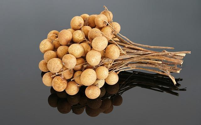 Dimocarpus Longan, Longan, Tropical, Tree, Fruit