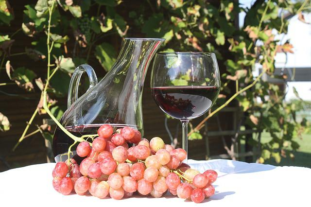 Fruit, Wine, Grapes, Climber, Red Wine