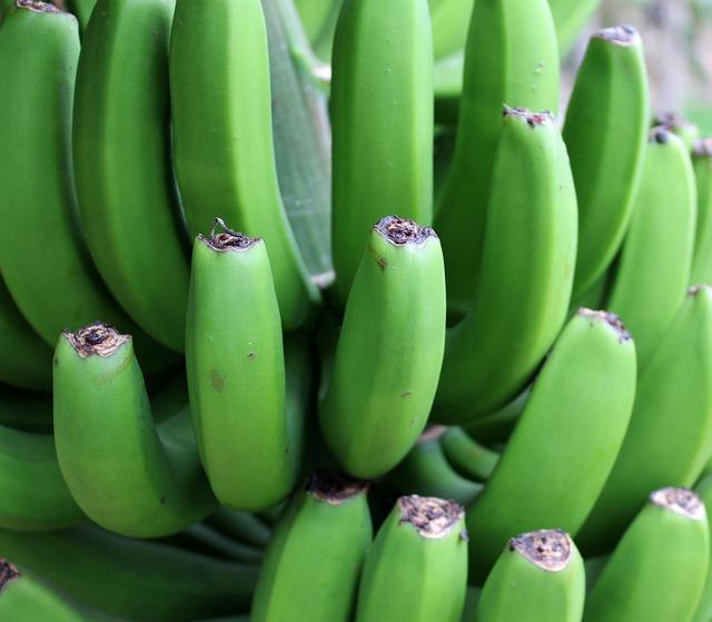 Banana, Green, Shrub, Fruit, Fruits, Vitamins, Close