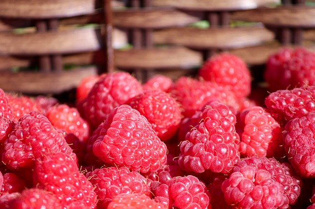 Raspberries, Basket, Fruits, Rubus Idaeus, Summer