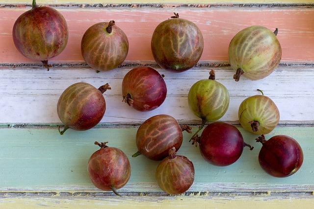 Fruits, Gooseberries, Berries, Still Life, Background