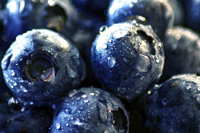 Blueberries, Fruits, Berries, Food, Fresh, Organic