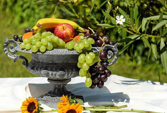 Fruit Bowl, Shell, Fruit, Fruits, Healthy, Food, Summer