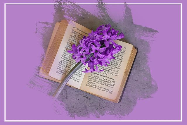 Hyacinth, Flower, Flowers, Fuchsia, Schnittblume