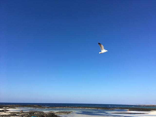 Sunset, Cotillo, Fuerteventura, Blue, Beauty, Simple