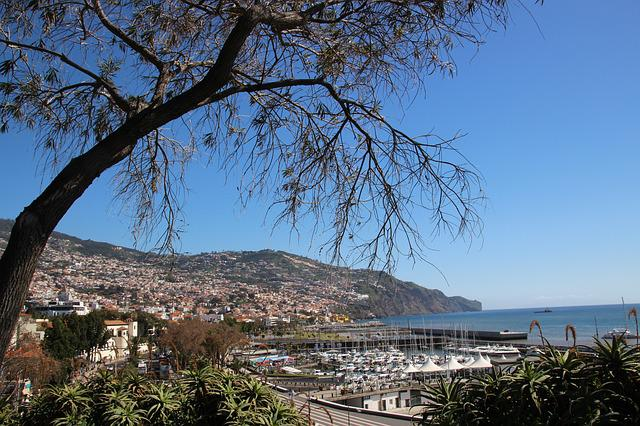 Madeira, Funchal, Portugal, Island, Travel, City, Ocean