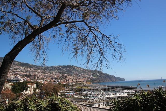 Madeira, Funchal, Portugal, Island, Travel, City, Ocean
