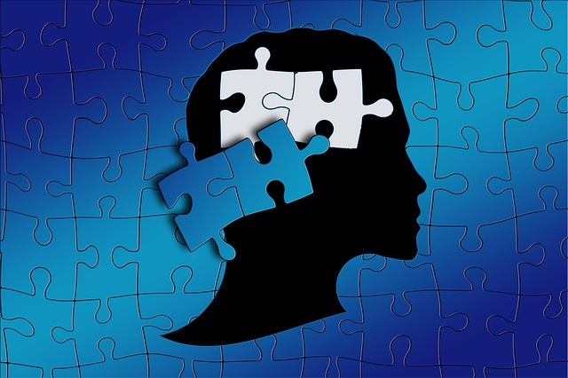 Dyslexia, Learning Disorder, Puzzle, Function, Work