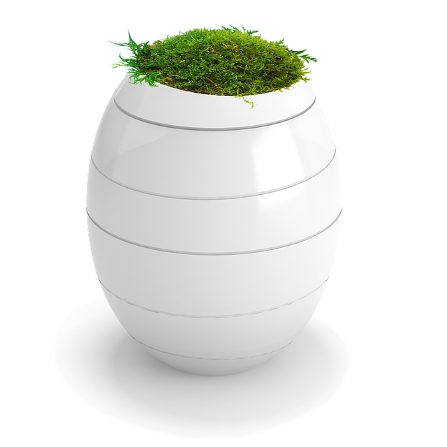 Funeral Urns, Plants, Funeral, Urns Ashes, Eco, Egg
