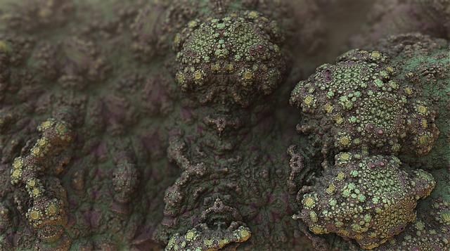 Mold, Bacteria, Fungus, Fungal, Spores