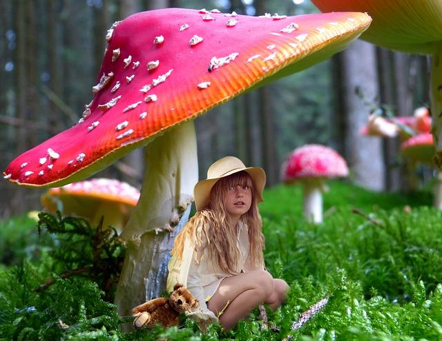 Child, Fungus, Umbrella, Shelter, Shadow