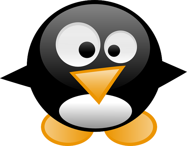 Penguin, Tux, Animal, Linux, Cartoon, Bird, Cute, Funny