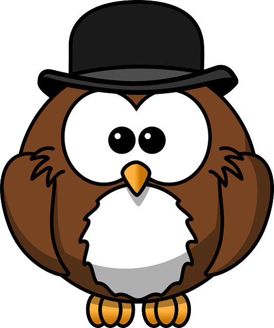 Owl, Animal, Bird, Bowler, Chaplin, Derby, Funny, Hat