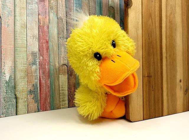 Duck, Stuffed Animal, Funny, Soft Toy, Cute, Children
