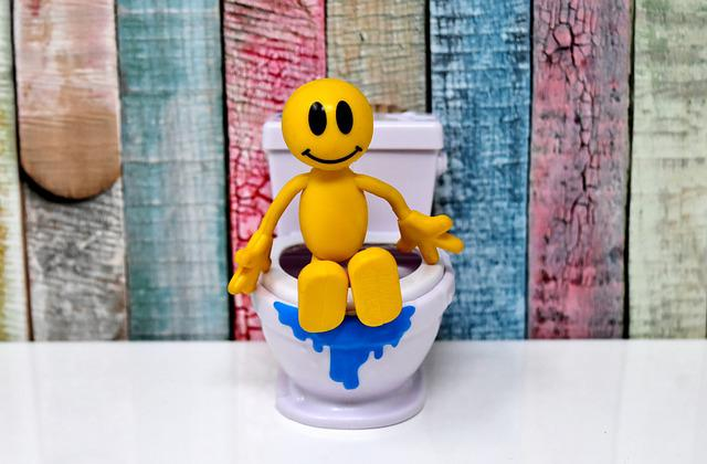 Toilet, Smiley, Figure, Loo, Cute, Funny, Wc, Session