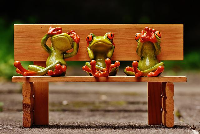 Frogs, Not See, Not Hear, Do Not Speak, Funny, Cute