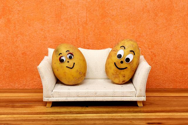 Couch Potatoes, Funny, Potatoes, Lazing Around, Sofa