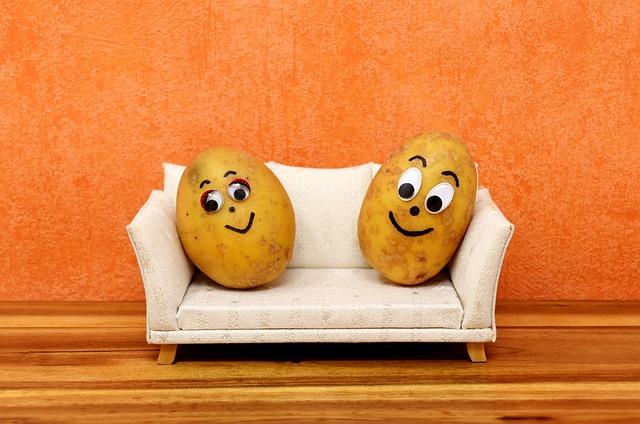 Couch Potatoes, Funny, Potatoes, Lazing Around, Sofa