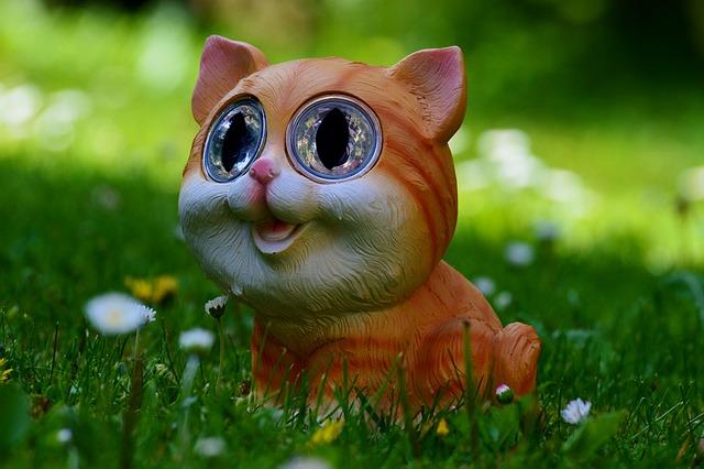 Cat, Meadow, Cute, Funny, Solar
