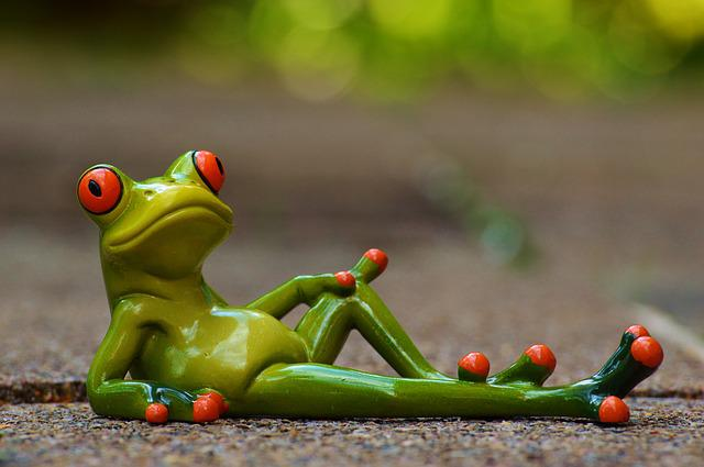 Frog, Lying, Relaxed, Cute, Rest, Fig, Funny