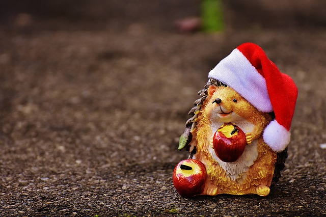 Hedgehog, Fig, Christmas, Santa Hat, Decoration, Funny