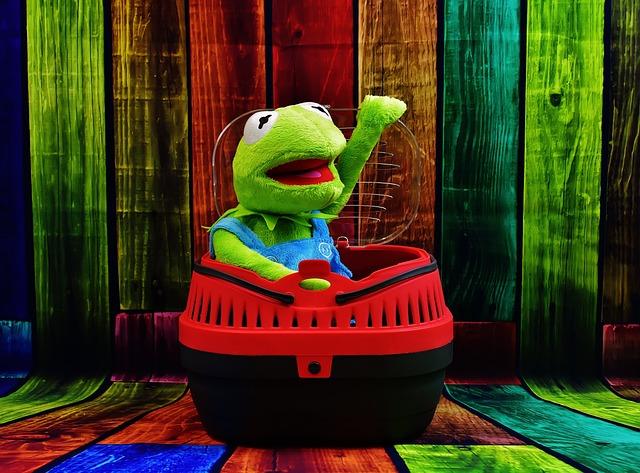 Kermit, Pet, Transport Box, Funny, Frog