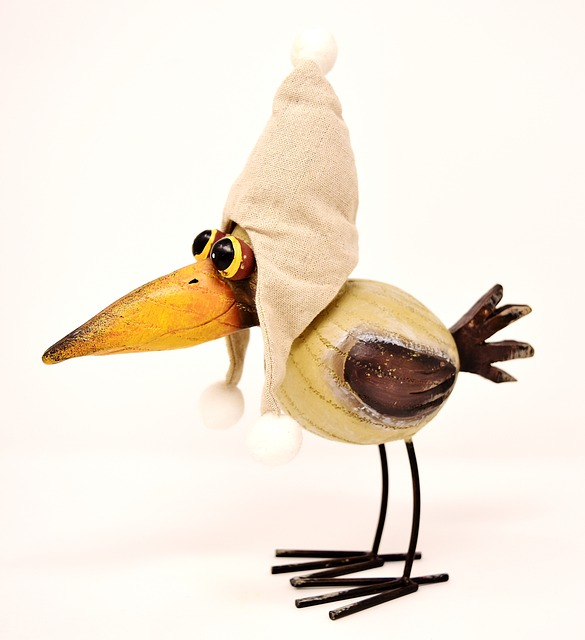Bird, Funny, Cap, Fabric, Weird Bird, Wood, Decoration