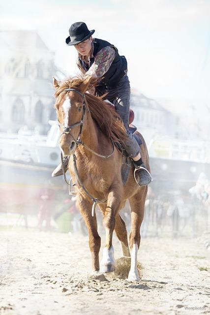 Horse, Gallop, Horse Show, Gallops, Wrinkle, Jumper