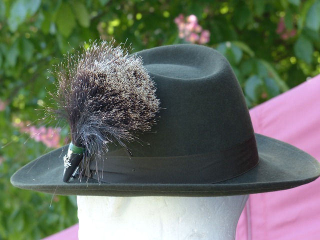 Gamsbart, Costume, Hat Decoration, Tradition, Hat
