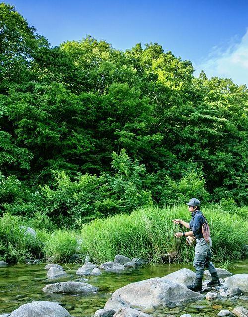 Fly Fishing, Fishing, Fly, Gangwon Do, Bukcheon, Simms