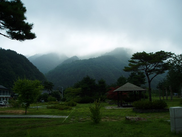 Gangwon Do, Choice, Landscape, Scenery