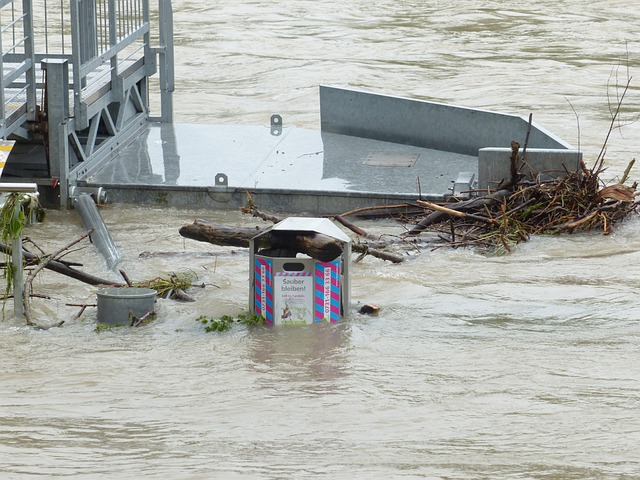 High Water, Garbage Can, Bank, Danube