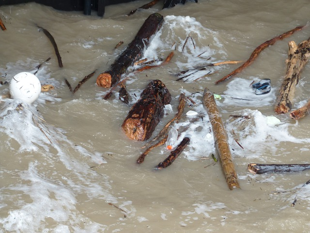 Drift Wood, Flotsam And Jetsam, Garbage, Scrap, Waste