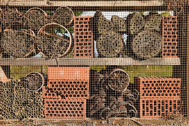 Bee House, Wild Bees, Garden, Closeups, Background