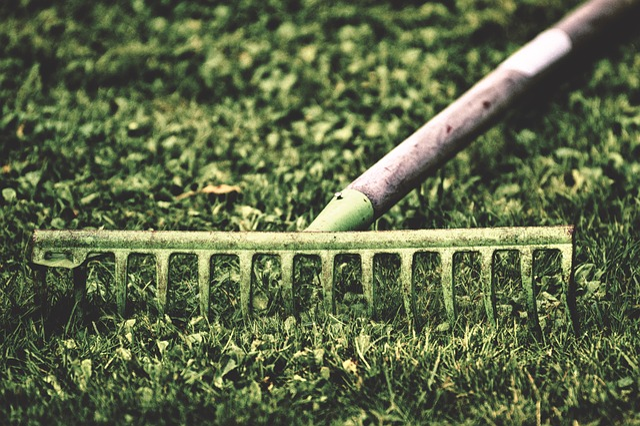 Computing, Garden, Work, Gardening, Nature