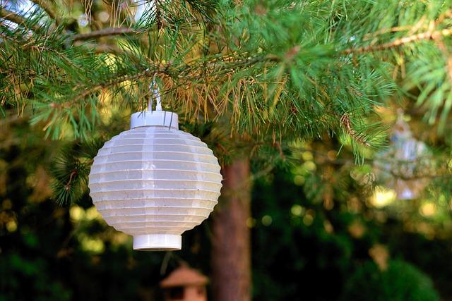 Lampion, Tree, Garden, Light, Lamp, Garden Decoration