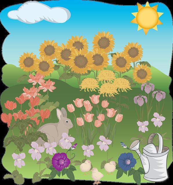 Flower, Flora, Summer, Nature, Desktop, Garden, Sun