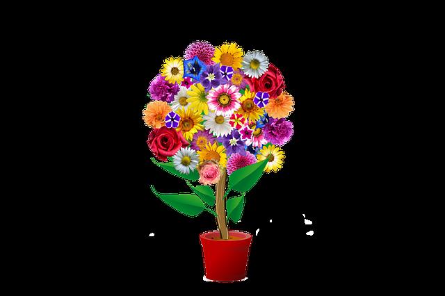 free photo plastic home indoor flowerpots flower color max pixel. Black Bedroom Furniture Sets. Home Design Ideas