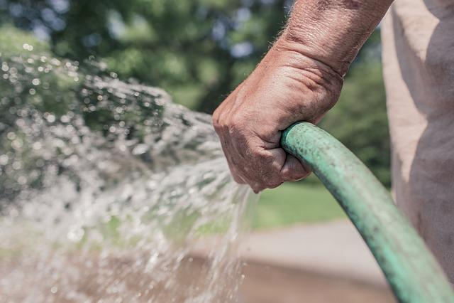 Garden Hose, Hose, Watering, Gardening, Garden, Summer