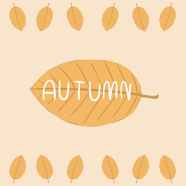 Autumn, Leaf, Nature, Garden, Season, Plant