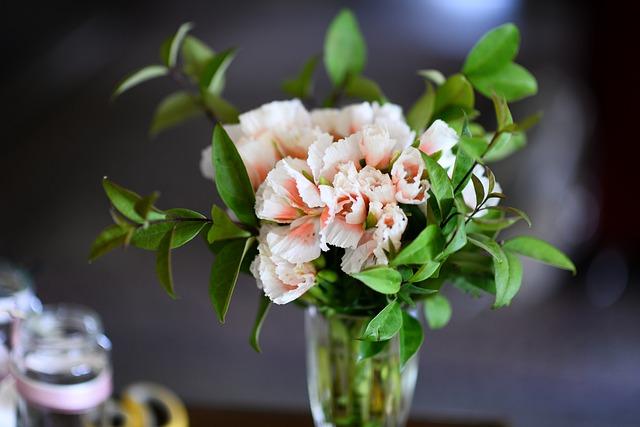 Flowers, Fleurs, Green, Plans, Garden, Petals