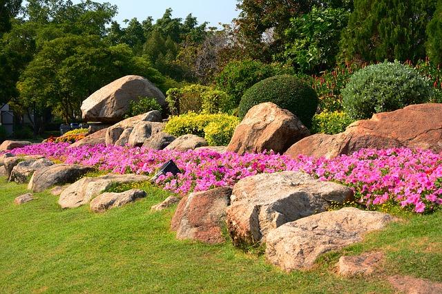 Parks, Flowers, Suan Luang, Park, Garden, Convert, View