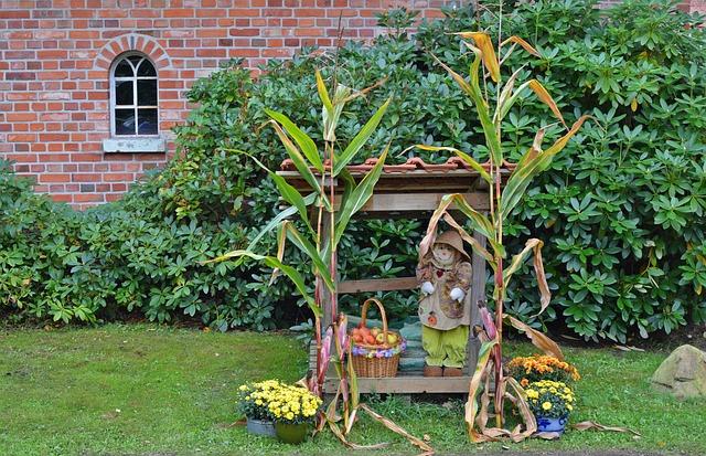 Thanksgiving, Decoration, Harvest Festival, Garden