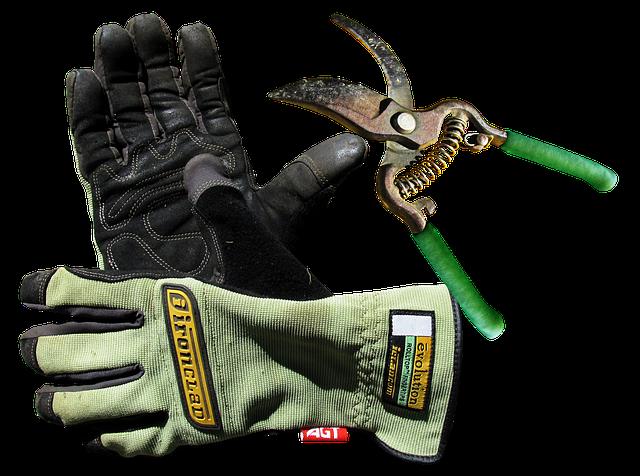 Garden, Gloves, Tool, Work
