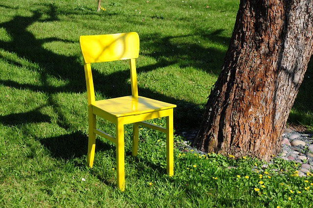 Chair, Yellow, Nature, Garden, Spring, Seat